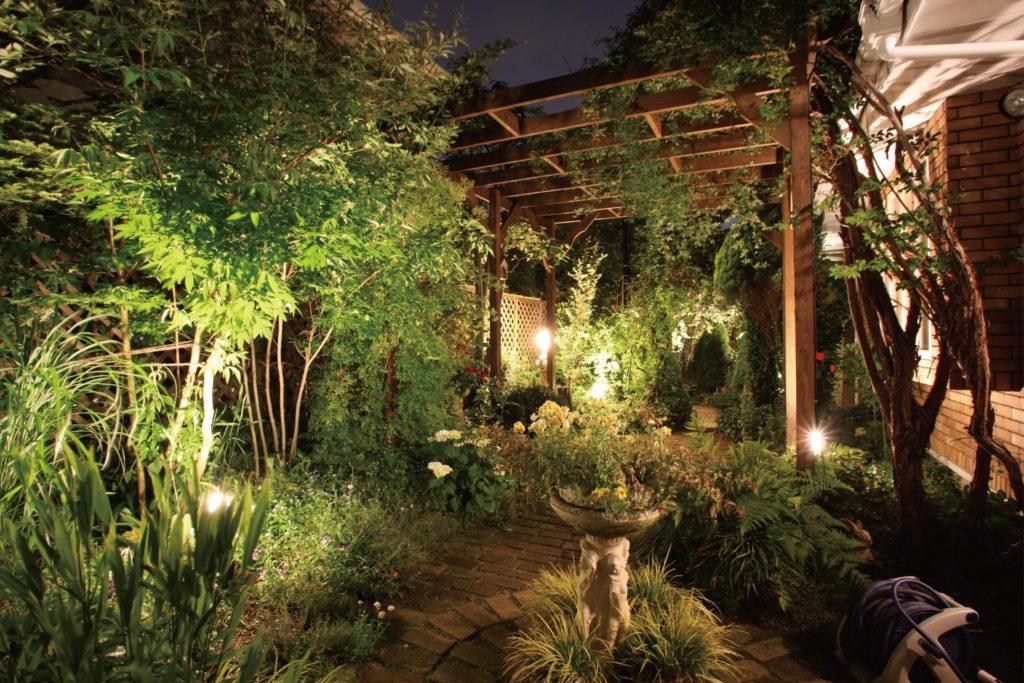 たくさんの植物が生い茂ったお庭