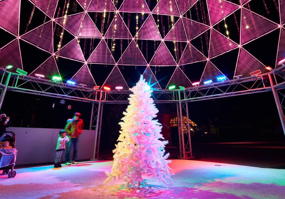 和歌山フェスタルーチェに設置されたドームの中がカラーライティングで照らされている写真