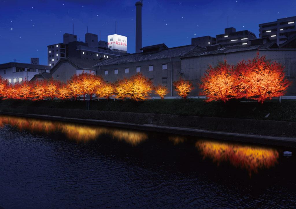 桜並木の秋バージョンのライティングのイメージ画像