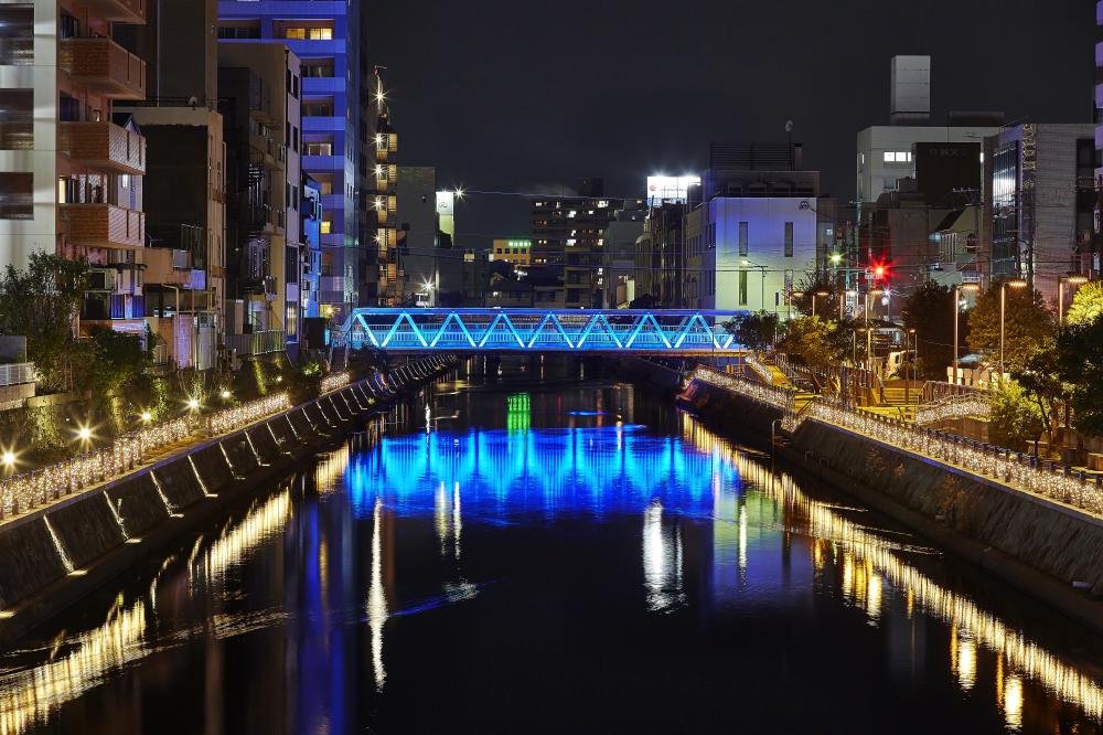 和歌山市にある市堀川の夜の様子