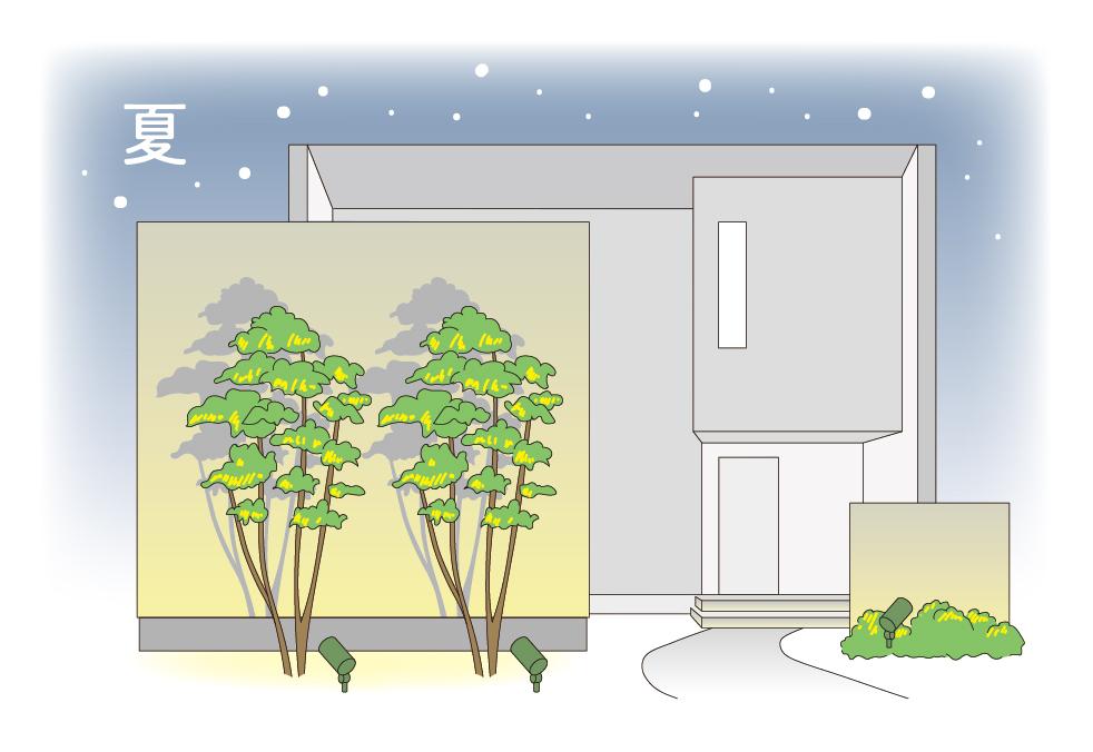 夏のお庭のライトアップのイメージ