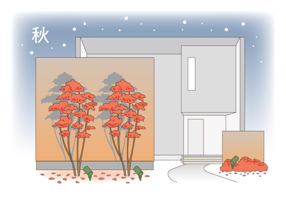 秋のお庭のライトアップのイメージ