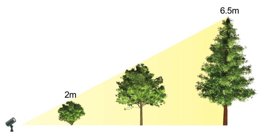 樹木の高さと光量の関係