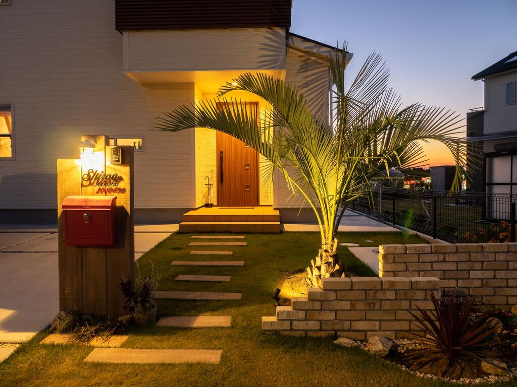 ヤシの木のような南国の植物をライトアップするイメージ写真
