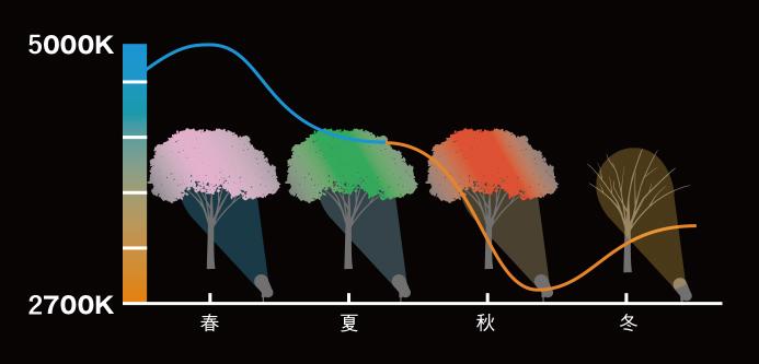 樹木の色合いと色温度の関係