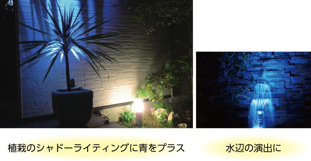 植栽や水を青でカラーライティングした写真