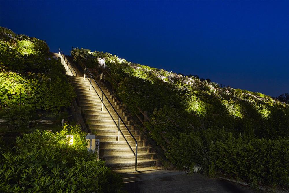 安全性を考え階段をライトアップしている写真
