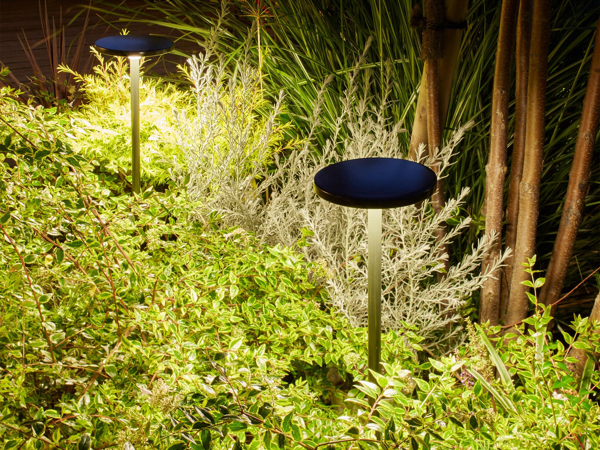 花壇などをパスライトでライティングした写真