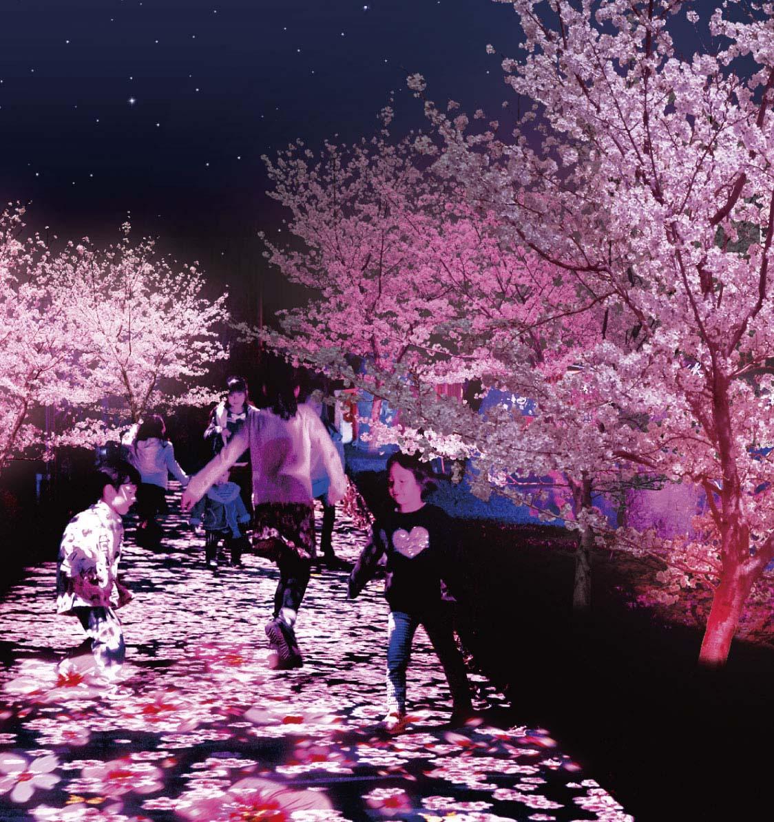 プロジェクションマッピングであるフラワーシャワーカーペット夜桜花見バージョンのイメージ画像