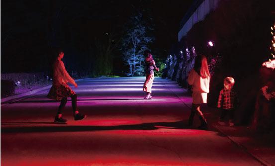 RGB照明で照らされた道の様子