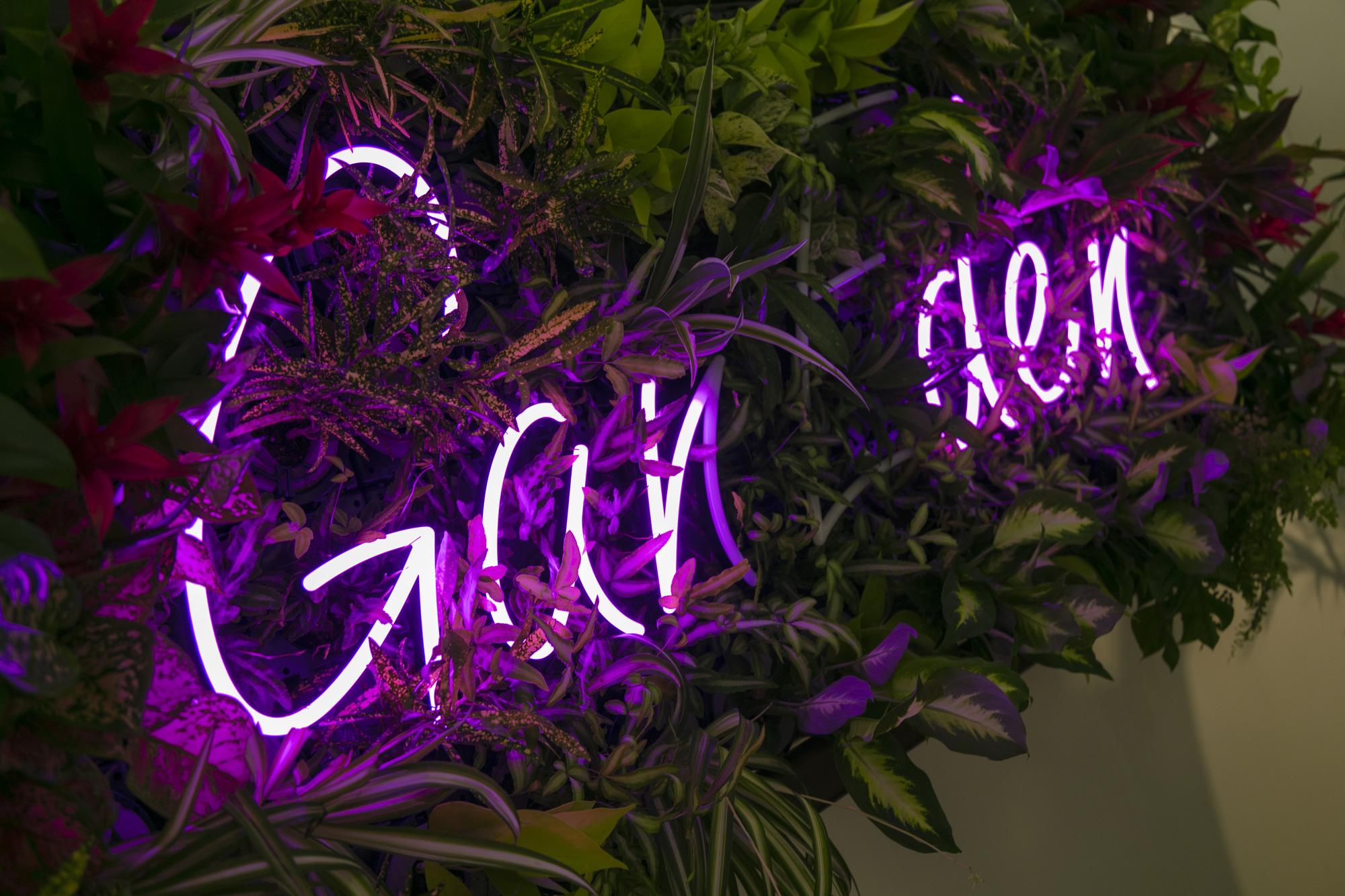 LEDネオンを植物の中にインテリアとして設置した例