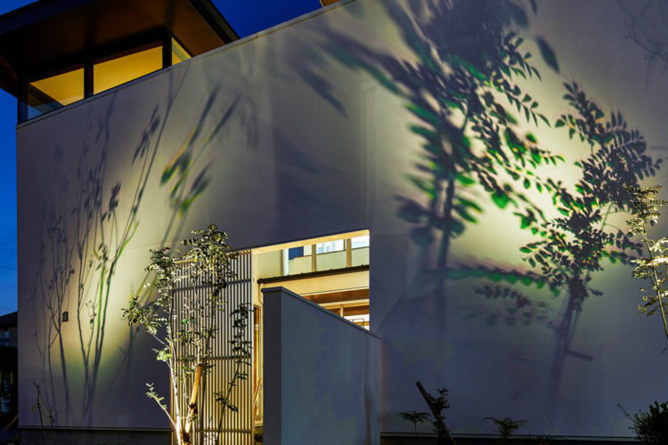 DIGISPOT記事「影と色の遊び心でお庭に彩りを。カラーシャドウフィルターのご紹介」のサムネイル画像