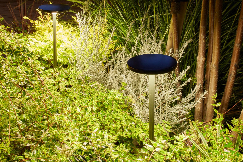 低木や草花をスプレッドライトでライトアップした例