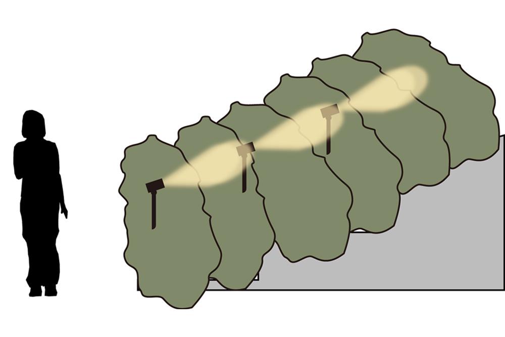 アジサイの斜面を下から照らすイメージ画像