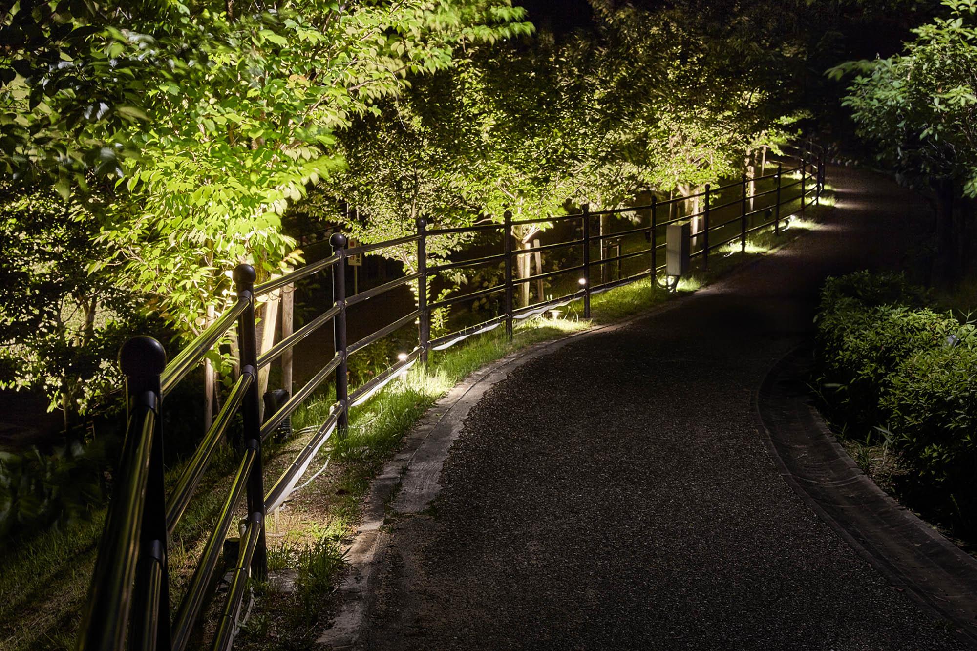 安全性を考え遊歩道をライトアップしている写真