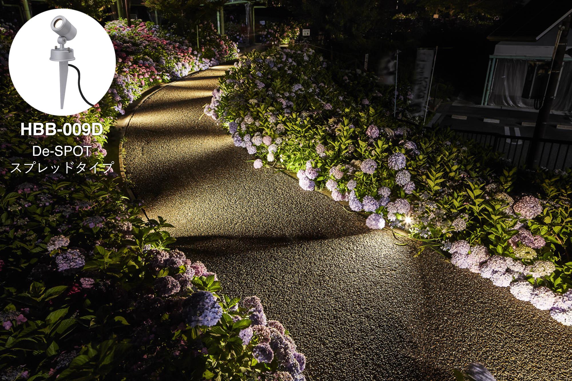 歩道の両側に植えられたアジサイをライトアップしている写真と使用商品