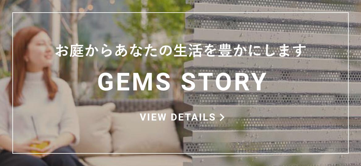 GEMS STORY