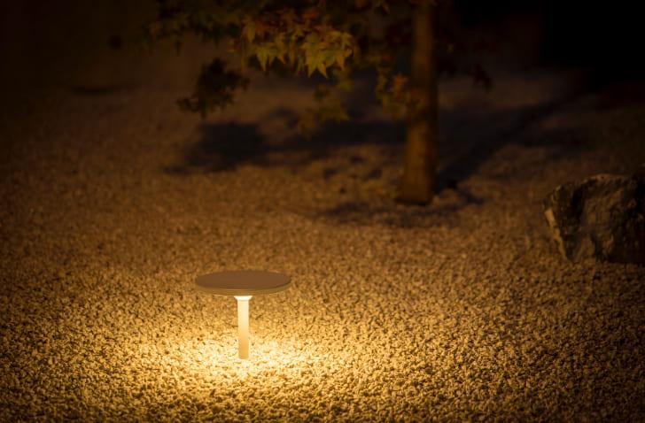 ディスク型の灯具が影を作らず、光を落とす