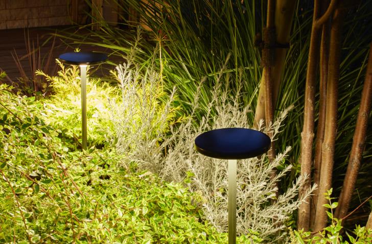 薄型灯具と細径ポールが主張を抑え、上からの光が植物を自然に見せます。