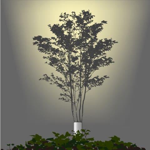 樹冠の広い樹木にワイドな配光を