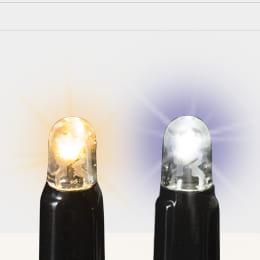 発光色 電球色、白