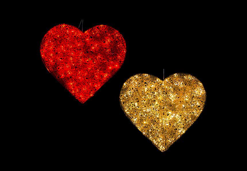2D Organic Heart