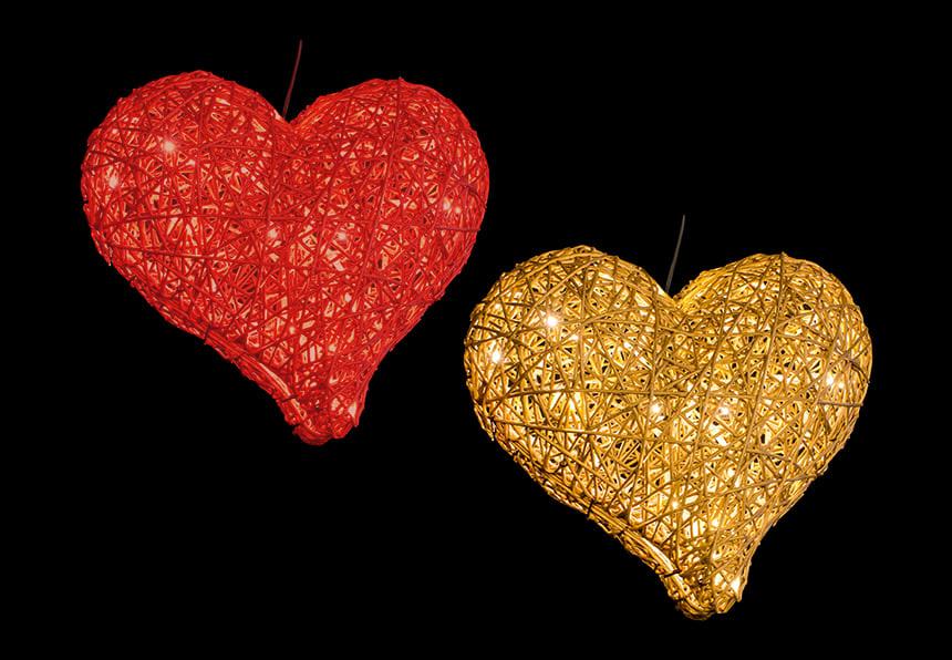 3D Organic Heart