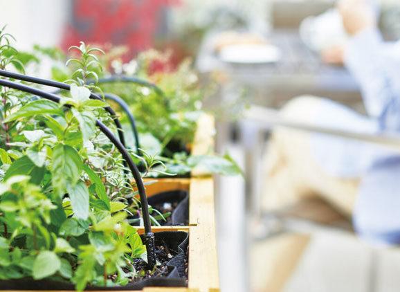 庭の IoT システム「GEMS®」を拡張  気象情報と連動し水やりを最適化する『潅水システム』を発売開始